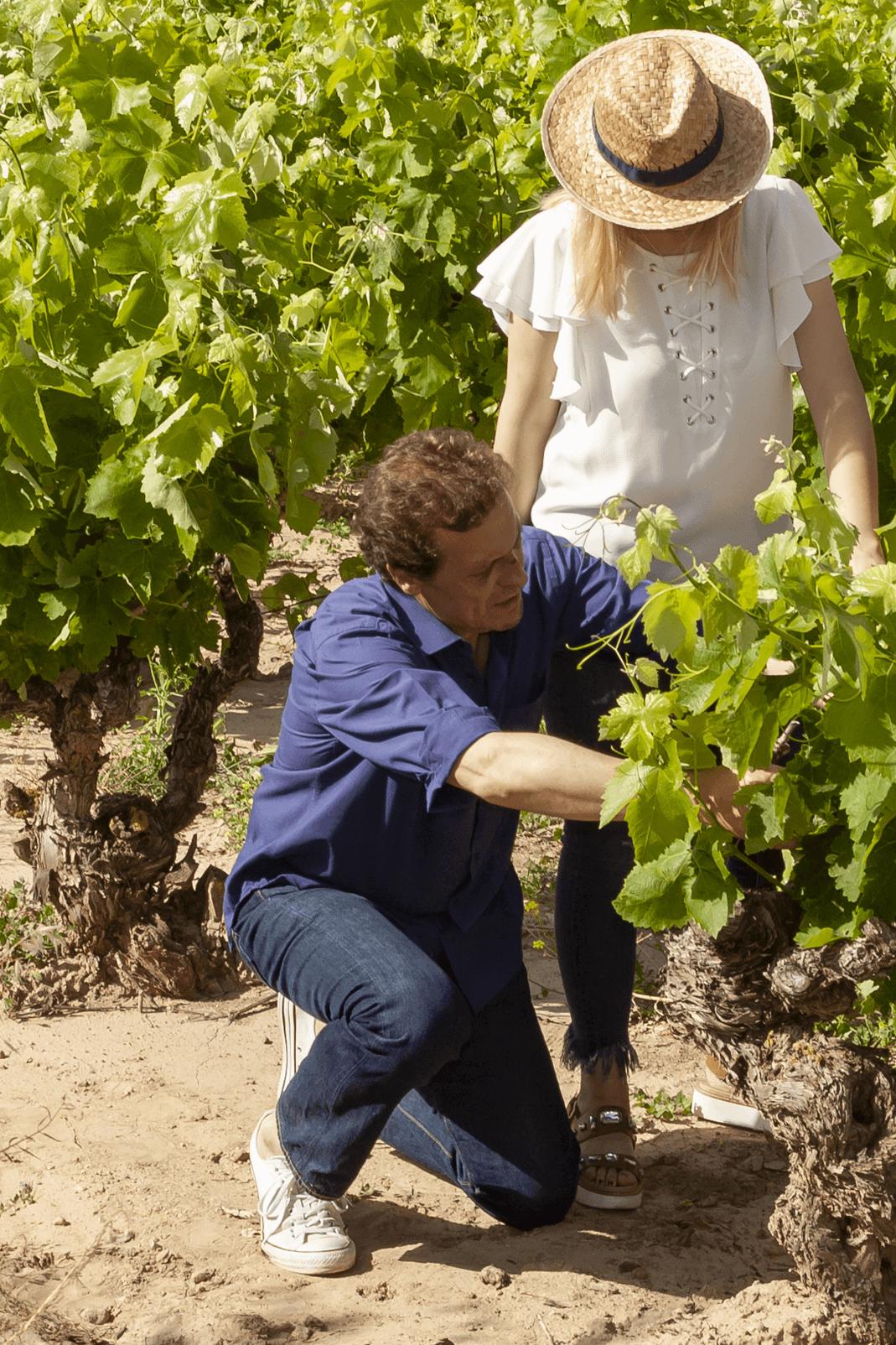 Rioja Alta bodegas taron vinos la rioja enoturismo